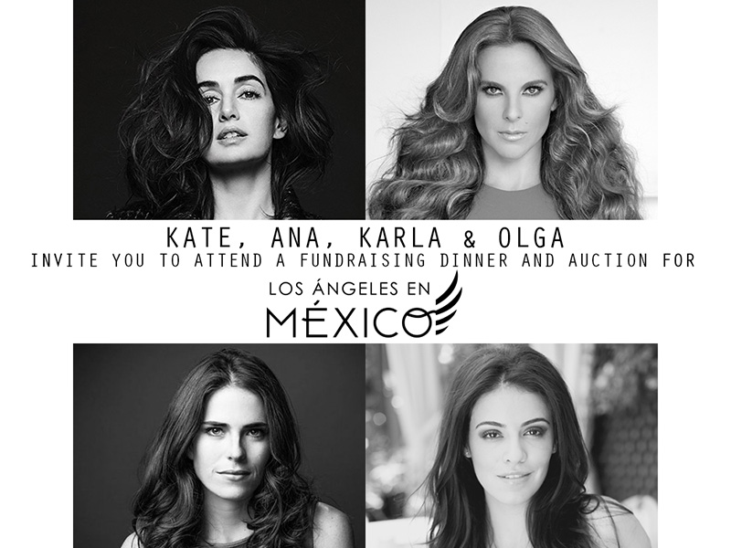 Fundraising dinner + auction for Los Angeles en Mexico
